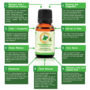 100% ORGANIC THERAPEUTIC PEPPERMINT ESSENTIAL OIL